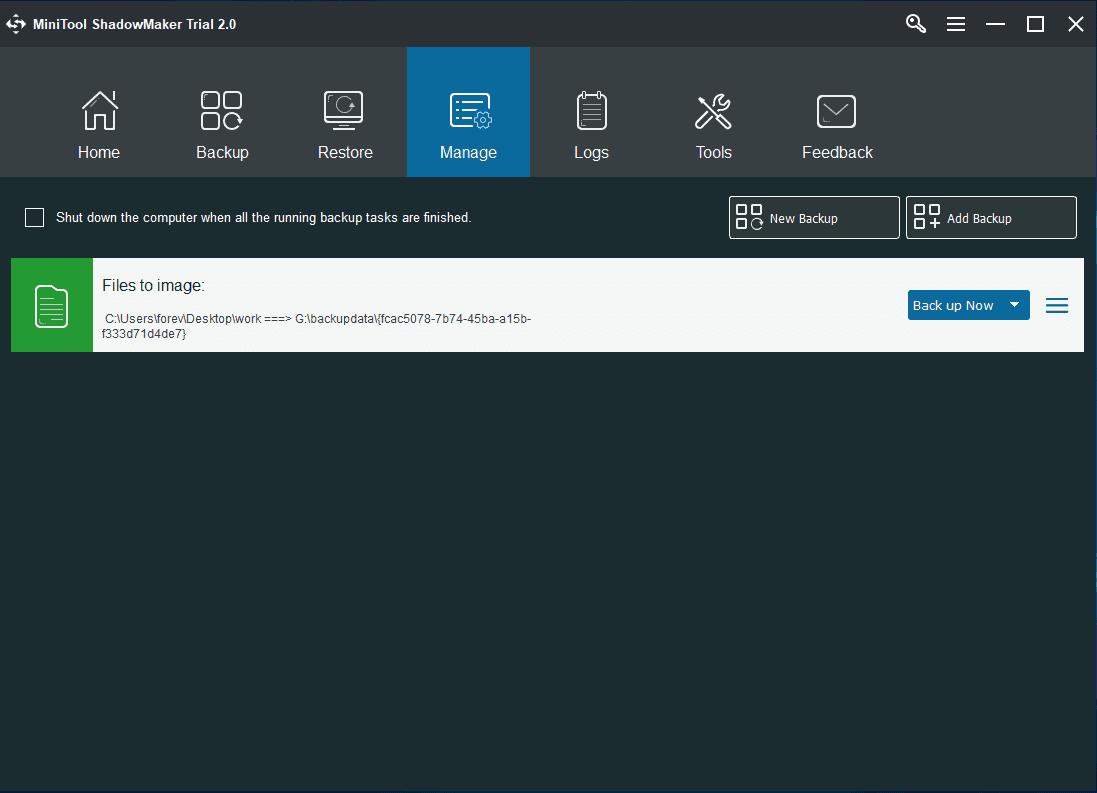 Main Backup Interface