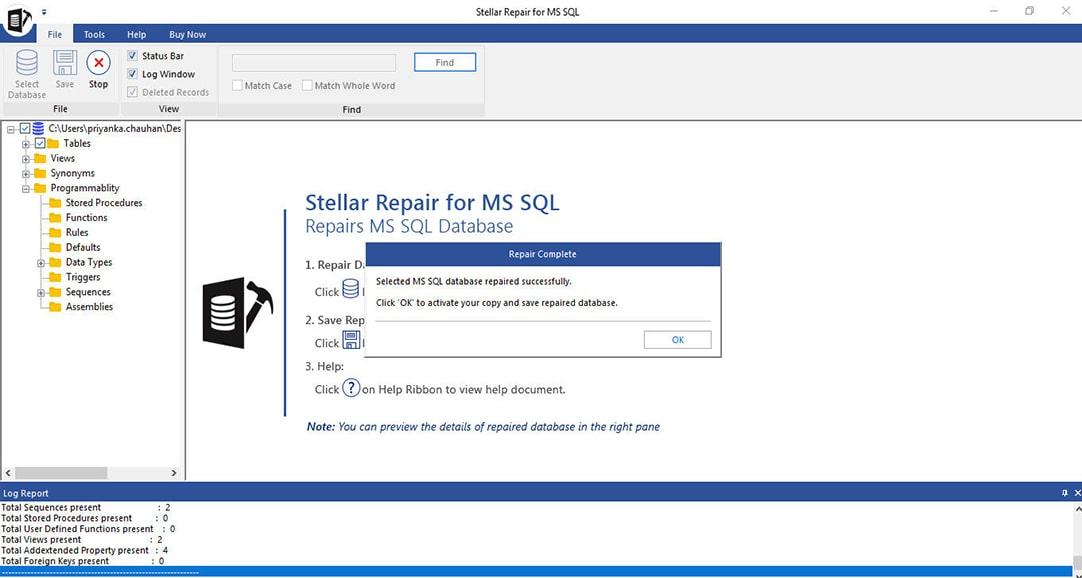 SQL Database Repair Successfully