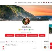 BuddyX-thene-Best-Social-Network-Theme-